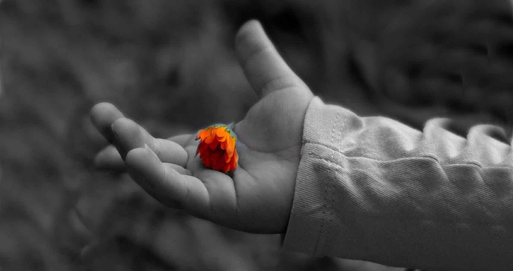 Meditación guiada para cultivar la compasión