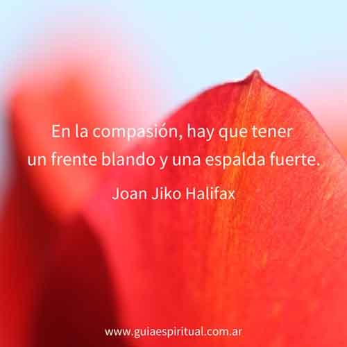 Joan Jiko Halifax. En la compasión...